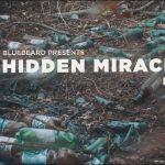 Hidden Miracles by Vladimir Vlasenko