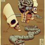 Anatomical Chart: Illustrations by Kevin Hong
