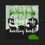 Himalaya Collective :: Healing Herbs