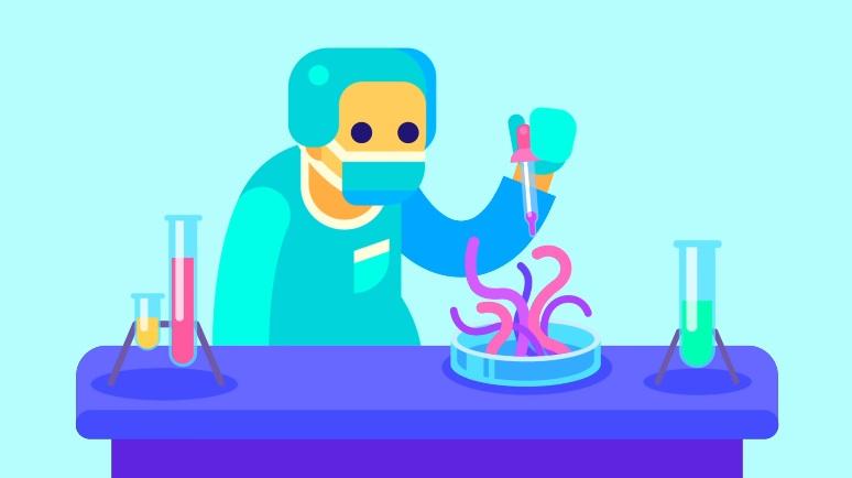 Genetic Engineering Amp Our Food