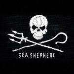 The Neptune Navy: Sea Shepherd